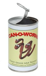 a can of worms